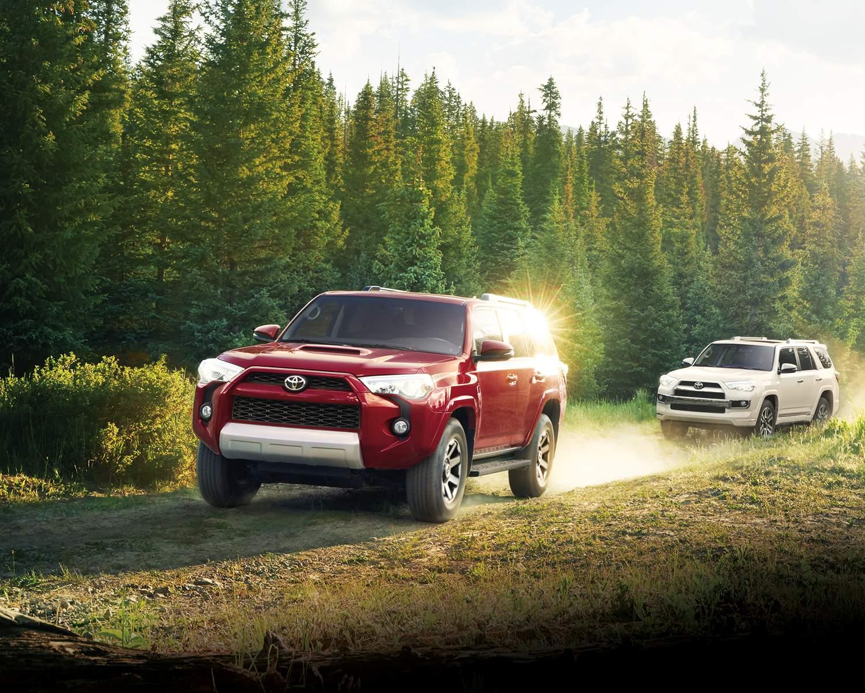Deux 4Runner 2018 sur chemin forestier: un rouge devant un blanc
