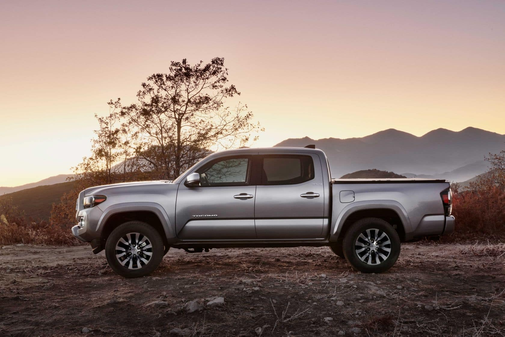 Côté conducteur du Toyota Tacoma 2020 argent